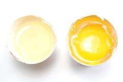 pojęcia podziału jajka oddzielny biały yolk Obraz Stock