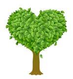 pojęcia serca odosobniony miłości drzewa biel Obrazy Royalty Free