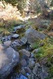 pojęcia strumienia czystego świeżej wody Zdjęcia Royalty Free