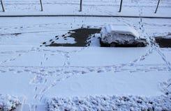 pojęcia target331_0_ wywołuje eksploraci odcisk stopy ścieżki śnieg gdzieś nieznane Zdjęcia Stock