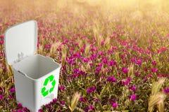 Pojęcie środowisko, przetwarzać i ekologia, Obrazy Stock