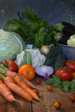 Pojęcie życiorys żywność organiczna Składniki dla zdrowego kucharstwa Warzywa i ziele na drewnianym tle Przygotowanie naczynia od Obraz Royalty Free