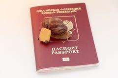 Pojęcie depresja - przyśpiesza odprawę, ślimaczki i paszport dokumentu, Zdjęcia Royalty Free