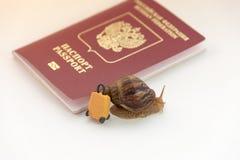 Pojęcie depresja - przyśpiesza odprawę, ślimaczki i paszport dokumentu, Zdjęcie Stock
