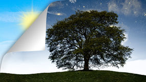 Pojęcie dzień vs noc Fotografia Stock
