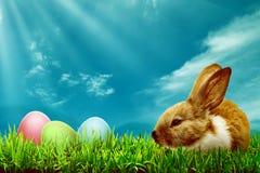 pojęcie Easter szczęśliwy Zdjęcie Royalty Free