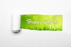 pojęcie Easter szczęśliwy Obrazy Royalty Free