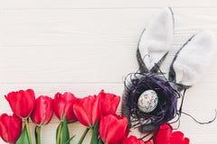 pojęcie Easter szczęśliwy królików ucho i elegancki jajko w gniazdeczku i tu Zdjęcie Stock