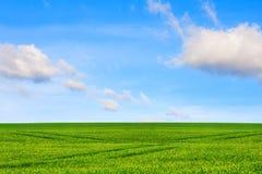 pojęcie ekologia Łąka i niebo obrazy stock