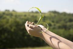 Pojęcie ekologia, ochrona środowiska obraz stock