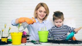 Pojęcie flancowanie Syn z naramiennego ostrza i świntucha pomocy macierzystej rośliny kwiatami w barwionych garnkach zdjęcie wideo