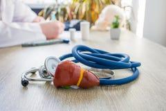 Pojęcie fotografia diagnoza i traktowanie wątróbka W przedpolu jest blisko stetoskopu na stole w backgr model wątrobowy gallbladd obraz stock