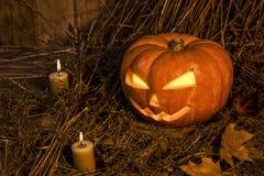 Pojęcie Halloween obrazy royalty free
