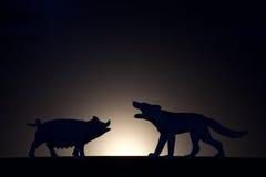 Pojęcie konflikt Świnia versus wilcza sylwetka Obrazy Stock