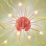 pojęcie móżdżkowy neuron ilustracja wektor