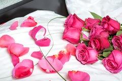 Pojęcie. małżeństwo propozycja Zdjęcie Royalty Free