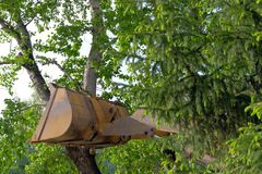 Pojęcie ochrona środowiska Niestaranna postawa w kierunku natury Ciągnikowy wiadro odpoczywający przeciw drzewu i łamał stanika zdjęcie royalty free
