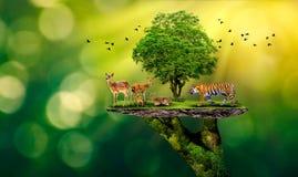 Pojęcie rezerwat przyrody chroni przyrody Globalnego nagrzania bochenka rezerwowej tygrysiej Jeleniej Karmowej ekologii Ludzkie r ilustracji