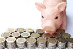 Pojęcie rok świnia, Ratuje dla przyszłościowego bogactwa zdjęcia royalty free