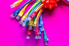 Pojęcie sieci interneta kabel na różowym tła zakończeniu up Zdjęcia Royalty Free