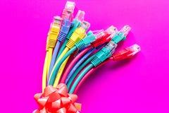 Pojęcie sieci interneta kabel na różowym tła zakończeniu up Obraz Stock