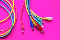 Pojęcie sieci interneta kabel na różowym tła zakończeniu up Obrazy Royalty Free