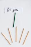 Pojęcie wyboru opcje z ołówkami na białego tła odgórnym widoku Zdjęcia Royalty Free