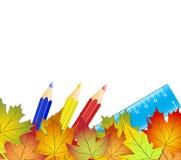 Pojęcie z powrotem szkoła, kolorowi jesień liście, kolorów ołówki ilustracji