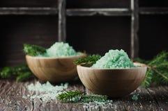 Pojęcie zdrój z solą i sosną rozgałęzia się Zdjęcie Stock