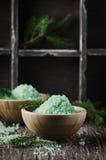 Pojęcie zdrój z solą i sosną rozgałęzia się Zdjęcia Stock