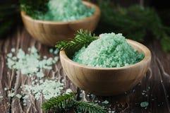 Pojęcie zdrój z solą i sosną rozgałęzia się Obraz Royalty Free