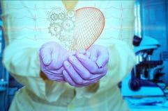 Pojęcie zdrowie i medycyna - kobiety doktorski mienie czerwony serce z przekładniami z ecg wykłada Fotografia Stock