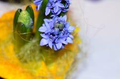 pojęcia kwiatu hiacyntowy romantyczny wiosna lato Zdjęcia Royalty Free