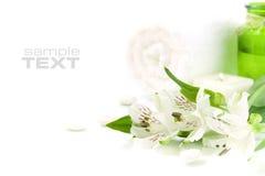 pojęcia zielony zdroju biel Obrazy Stock