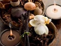 pojęcie aromatherapy zdrój Zdjęcie Stock