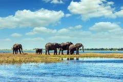 Pojęcie egzotyczna turystyka Zdjęcie Stock
