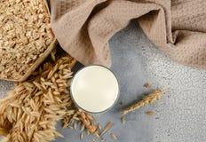 Pojęcie jarska dieta Owsa mleko w owsów ucho, szkle i owsie i Odgórny widok obraz stock
