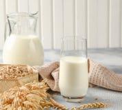 Pojęcie jarska dieta Owsa mleko w szkle z dzbankiem owsa mleko, owies i owsów ucho zdjęcia royalty free