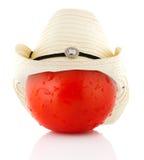 pojęcie pomidor Zdjęcie Stock