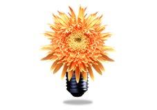 pojęcia eco energia Zdjęcie Royalty Free