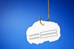 pojęcie phishing Zdjęcia Royalty Free