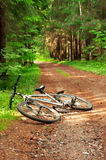 pojęcie rowerowa turystyka Zdjęcie Royalty Free