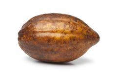 Pojedyncza świeża cacao owoc Obrazy Royalty Free