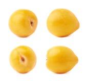 Pojedyncza żółta mirabelki śliwka odizolowywająca Fotografia Stock
