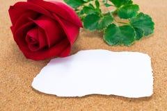Pojedyncza czerwieni róża z papierem który burnt przy krawędziami na corkb, Fotografia Stock