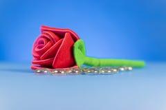 Pojedyncza Czerwona tkanina Wzrastał Zdjęcie Royalty Free