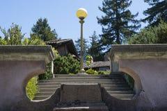 Pojedyncza latarnia uliczna nakrywa róża schodki w Berkley, CA fotografia stock