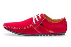 Pojedyncze rzemienne czerwonego koloru samiec kierpec Obrazy Royalty Free