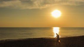 Pojedynczego faceta odprowadzenie na plaży Fotografia Royalty Free