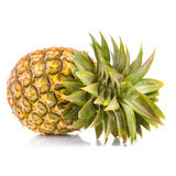 pojedynczy ananasowy white zdjęcia royalty free